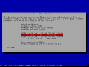 5debian install-partition disks-partitions.png
