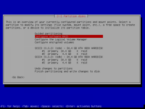 9debian install-partition disks-md.png