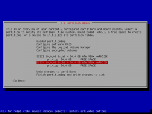 4debian install-partition disks-with empty partition tables.png